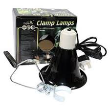 Flukers Sun Dome Clamp Lamp by Cg10710 V0parent Reptiles Pinterest Reptiles And Parents
