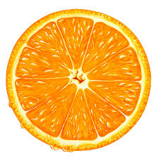 Orange Slice PNG Clipart Best WEB Clipart