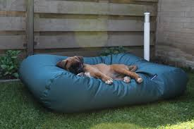 Dog Bed Green (coating) Large Queen Chair Corduroy 8 Ft Bean Bag Large 5 Saravihacom Bed For Dogs Korrectkritterscom Icon Kenai Faux Fur Arctic Wolf Grey 85cm X 50cm Luxurious Furry Living Room Bags For Adults Leather Bean Bag Chair Xl No Beans Inc In Me10 Swale The Big Giant Huge Extra Paw Dog Beds Ultimatesack Brilliant About Vinyl Chairs Home Design Inspiration And What Is The Best Sofa Fabric If You Have Pets Forever Pet