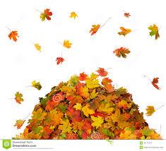 Falling clipart pile fall leaves 3