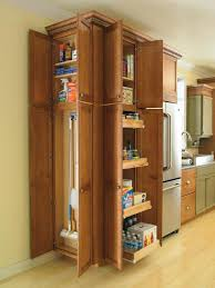 storage cabinet home depot robys co