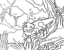 Epic Iguana Coloring Page 49 In Pages Online With
