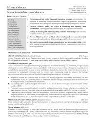 Finance Manager Resume Format For Assistant Sample Senior Medium Size