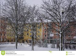 100 Apartments In Gothenburg Sweden Swedish Winter Trees Without Leaves Stock Image Image Of