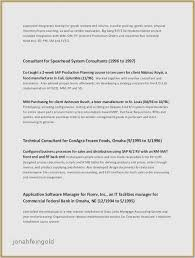 Resume Summary Examples For Little Work Experience New Template College Student With No