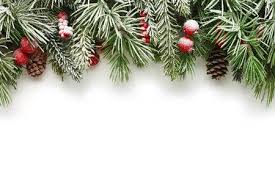 Snow Covered Christmas Tree Branches Background Stock Photo Picture And Royalty Free Image 34064887