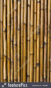 100 Bamboo Walls Texture Stock Picture I3033803 At FeaturePics