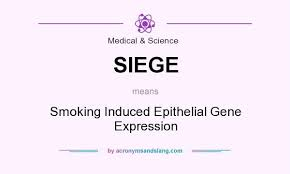 what is the definition of siege what does siege definition of siege siege stands for