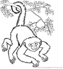 Post Navigation Previous Postcartoon Monkey Coloring Page