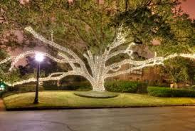 San Antonio Holiday Tree Lighting