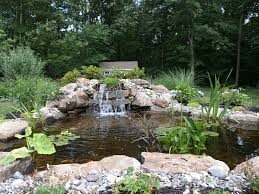 Ponds, Waterfalls & Fountains | Peter Jerrom Landscapes Backyards Mesmerizing Pond Backyard Fish Winter Ideas With Waterfall Small Home Garden Ponds Waterfalls How To Build A In The Exteriors And Outdoor Plus Best 25 Waterfalls Ideas On Pinterest Water Falls Pictures Filters For Interior A And Family Hdyman Diy Fountains Above Ground Satuskaco To Create Stream For An Howtos 30 Diy Your Back Yard Waterfall