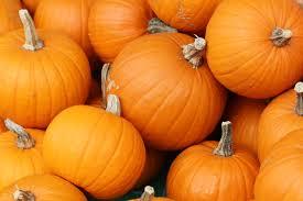 Pumpkin Enzyme Peel by Shine Beauty Beacon Pumpkin Party Celebrate Soft U0026 Luminous Skin