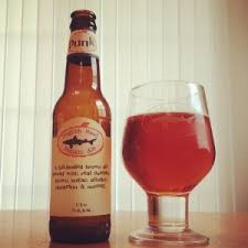 Dogfish Head Punkin Ale Release Date by 25 Best Micah Does Beer Images On Pinterest Beer Craft Beer And