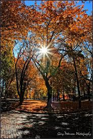 Spirit Halloween Spokane Valley 2015 by 58 Best Near Nature Near Perfect Images On Pinterest
