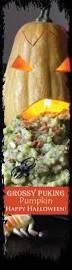 Pinterest Pumpkin Throwing Up Guacamole by Přes 25 Nejlepších Nápadů Na Téma Puking Pumpkin Na Pinterestu