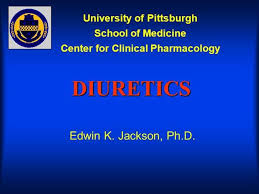 High Ceiling Diuretics Can Cause by Pharmacology Of Diuretics Authorstream