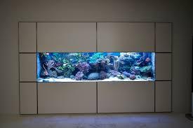 aquarium dans le mur projet 1500 l encastré raymond29 mon projet mon bac et moi