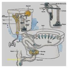 Fix Sink Stopper Spring Clip by Bathroom Sink Faucets Elegant How To Install A Bathroom Sink