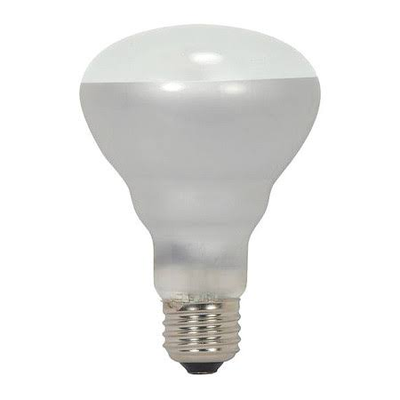 Satco S2451 BR25 Frosted Reflector Light Bulb - 45w