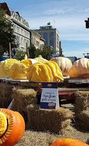 Pumpkin Patches Cincinnati Ohio Area by Masonmetu Greater Cincinnati U0027s One Stop Site For Family Fun