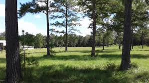 Florida Tile Grandeur Nature by Houses With Land For Sale In Ocala Showcase Properties