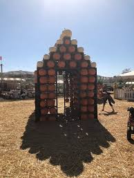 Pumpkin Patch Animal Farm In Moorpark California by Underwood Family Farms Moorpark All You Need To Know Before