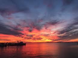 100 Fire Island Fair Harbor Pics