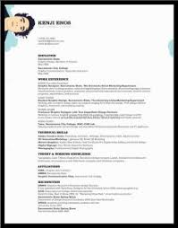 professional format resume exle exles of resumes 89 fascinating simple resume exle sle