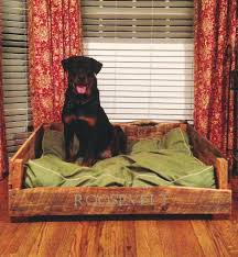 Serta Dog Beds by Can Dogs Sniff Bed Bug Looking Serta Dog Bed In Bathroom Los