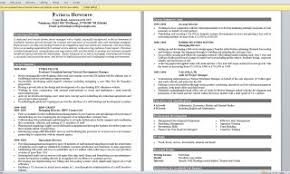 Gallery Of Job Resume Example First Examples Good Summary Jobs