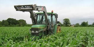 chambre d agriculture du finist e des rendez vous désherbage mécanique sur maïs en bretagne chambre
