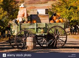 Pumpkin Patch Utah by Antique Farm Wagon In Old Deseret Village In Salt Lake City Utah