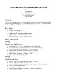 Resume Format Work Experience Awesome No Sample New With Examples Template