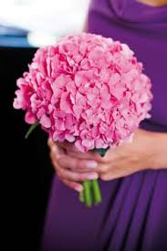 Savvyish Simple Stylish Wedding Flowers Hot Pink Hydrangea