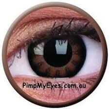 Prescription Halloween Contacts Ireland by Best 25 Coloured Contact Lenses Ideas On Pinterest Contact Lens