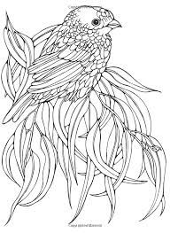 Designs For Coloring Birds Ruth Heller 9780448031507 Amazon Books