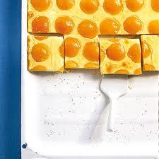 aprikosen blechkuchen rezept