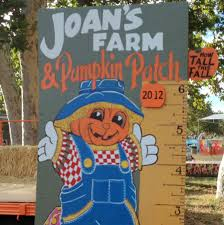 Livermore Pumpkin Patch by Joan U0027s Farm In Livermore California