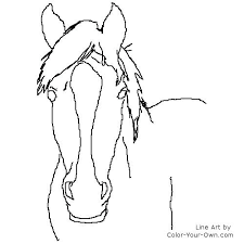 Horse Head Coloring Page Mare Study With Regard To