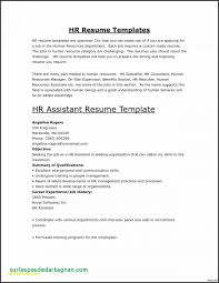 Resume Profile Example Waiter Awesome Templates Server Template Vip