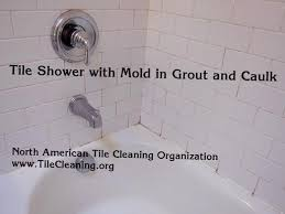 how to get rid of mold in shower orange mold
