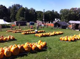 Apple Pumpkin Picking Syracuse Ny by Will U0027s Cackleberry Castle Pumpkin Farm Home