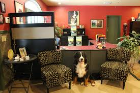Toshis Living Room by Camp Mimi Pet Resort Dog Boarding Doggie Day Care Pet Boarding