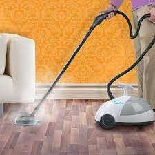 Steam Cleaning Old Wood Floors by Amazon Com Steamfast Sf 275 Canister Steam Home U0026 Kitchen