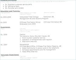 Resume Title Examples Styles Nurse Graduate