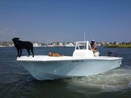 Bayliner 190 Deck Boat by Boat Rentals In Traverse City Pontoons Speed Boats U0026 More Tc