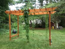 Hop Pergola Idea   Gardening   Pinterest   Pergola Ideas, Pergolas ... Backyards Splendid Simple Arched Trellis For Grapes Or Pole Backyard Hop Outdoor Decorations Pictures On Excellent Wondrous Arbor Ideas 41 Grape Vine How To Build Grapevine Trellis Bountiful Pergola My Kiwi That I Built From Diy Itructions Things How Build A Raspberry Youtube Grape Vine Roselawnlutheran Stunning Vines Design Over Spaces Noteworthy