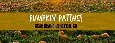 Studts Pumpkin Patch Hours by Top 3 Pumpkin Patches Near Grand Junction Co
