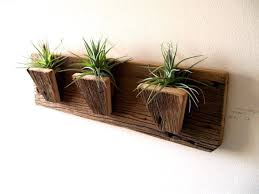 Air Plant Holder Planters Tillandsia Plants Reclaimed Barn Wood Rustic Wall Hanging Included