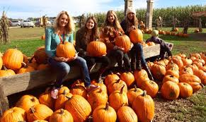Pumpkin Picking Maryland by 15 Reason Why Fall Is The Best Season Of All